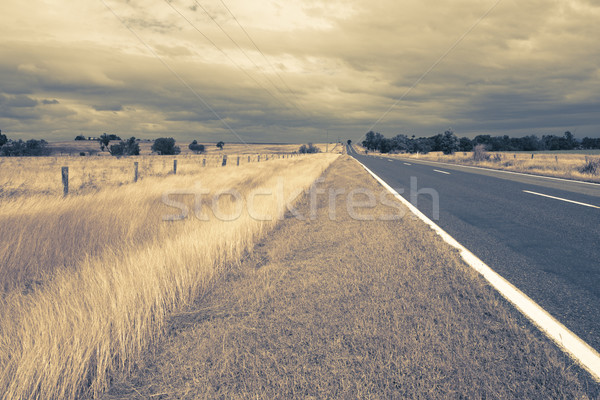 Outback Landscape Stock photo © epstock