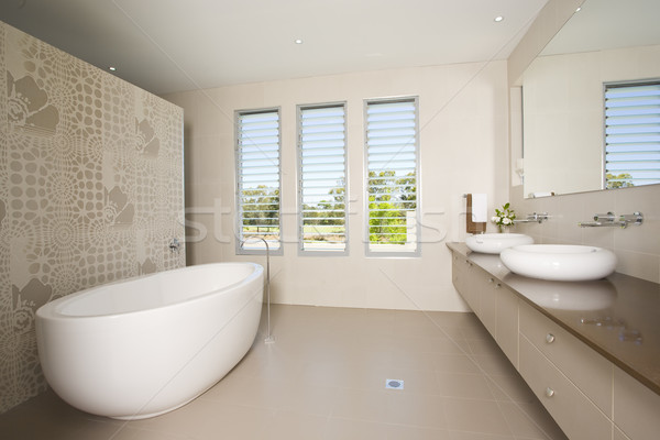 роскошь ванную близнец пейзаж окна отель Сток-фото © epstock