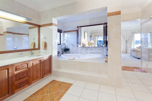 Elegante bano lujo casa madera bano Foto stock © epstock