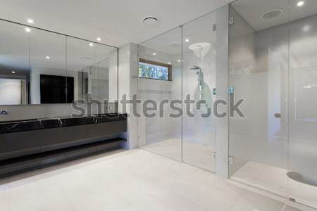 Luxury bathroom Stock photo © epstock