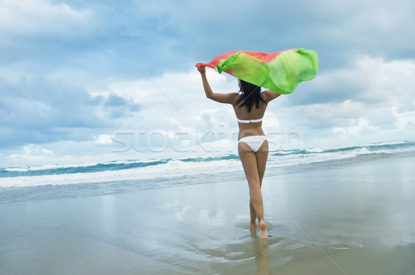 Stock photo: model on beach in bikini holding shawl in the wind