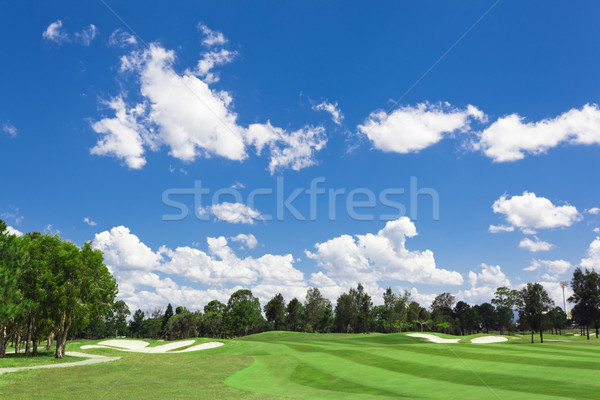 Sunny Golf Green Stock photo © epstock