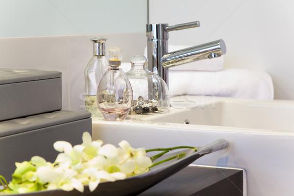 bathroom in modern townhouse Stock photo © epstock