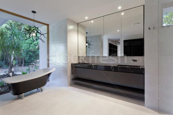 Lujo bano espejo fregadero clásico bañera Foto stock © epstock