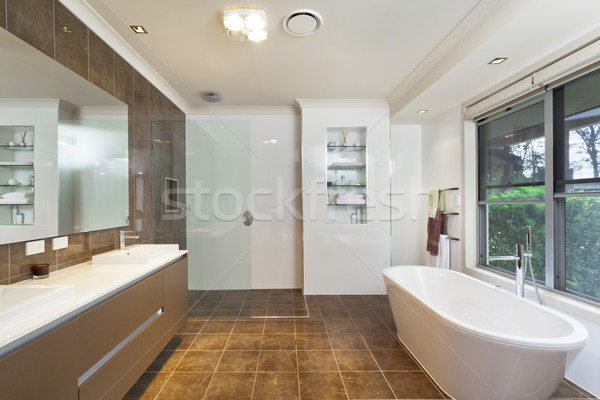 Modern bathroom Stock photo © epstock