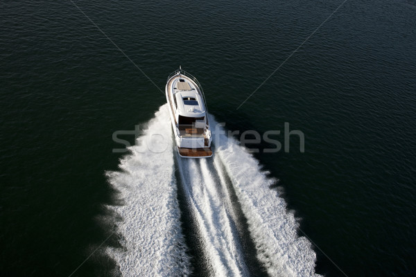 A fast speedboat sailing in a sea Stock photo © epstock