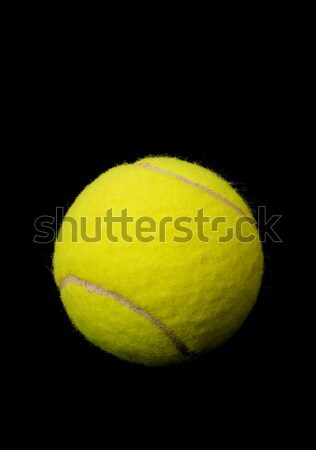 Tennis ball Stock photo © ErickN