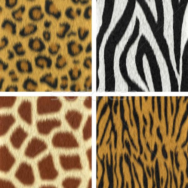 Bezszwowy futra tekstury leopard zebra żyrafa Zdjęcia stock © ErickN