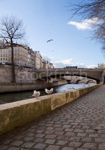 Paryż la rzeki Francja Zdjęcia stock © ErickN