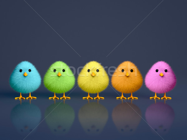 Fluffy Colorful Chicks Stock photo © ErickN