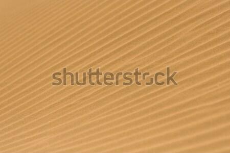Wzór fali piasku pustyni charakter asia przygoda Zdjęcia stock © ErickN