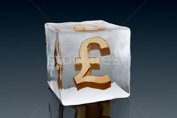 Frozen Pound Stock photo © ErickN