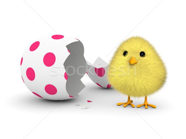 Pâques chiches pelucheux jaune sur œuf de Pâques Photo stock © ErickN