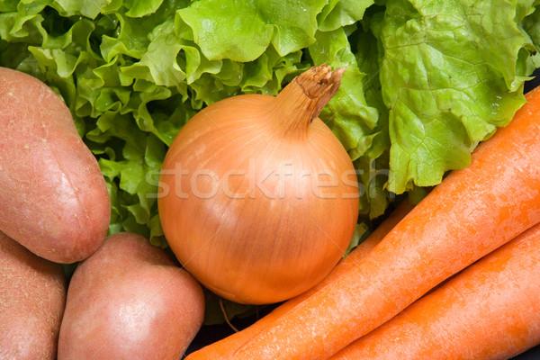 Fresh onion Stock photo © ErickN