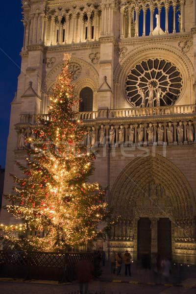 Christmas at Notre-Dame Stock photo © ErickN