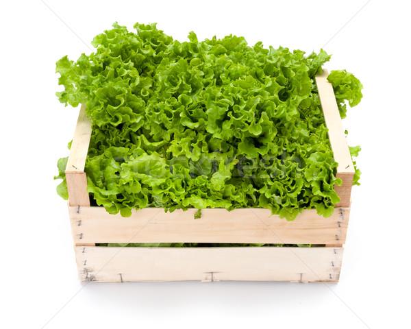 Hoja verde lechuga madera Foto stock © erierika