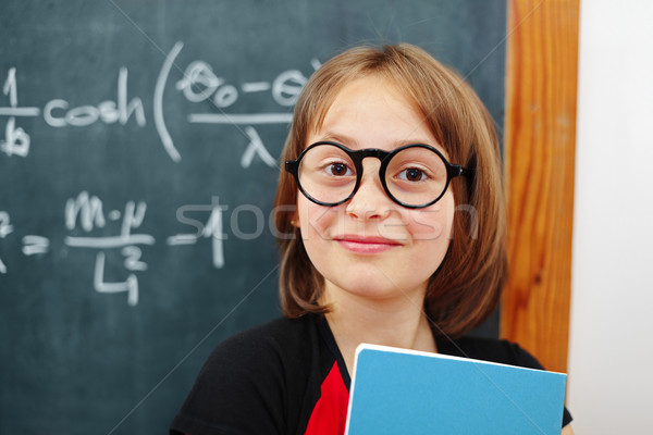 Wise math schoolgirl Stock photo © erierika