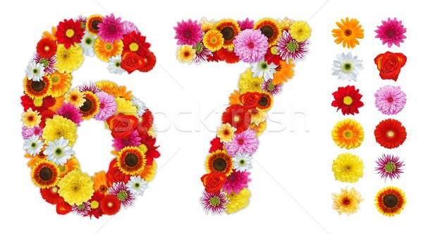Numbers 6 and 7 made of various flowers Stock photo © erierika