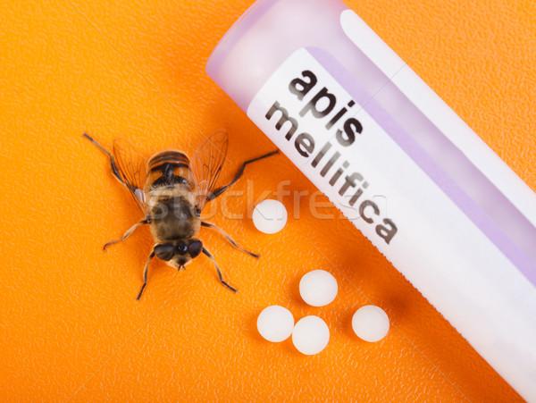Homeopáticos abelha real medicina pílulas Foto stock © erierika
