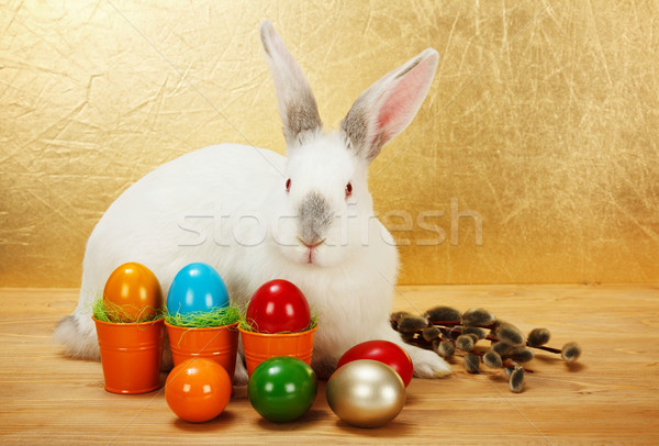 Bunny with Easter eggs and catkin Stock photo © erierika