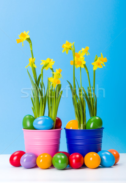 Narcisos colorido ovos de páscoa amarelo azul páscoa Foto stock © erierika