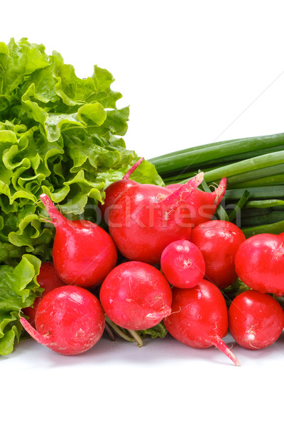Fresh spring vegetables: radish, scallion and lettuce Stock photo © erierika