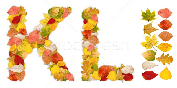 Characters K and L made of autumn leaves Stock photo © erierika