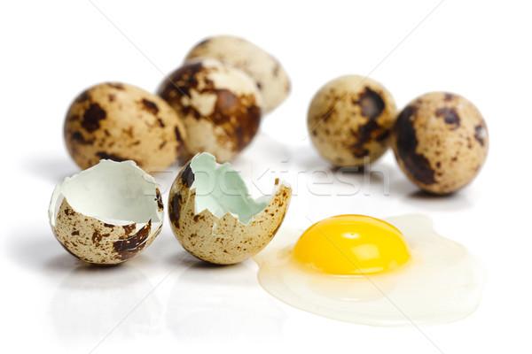 Crudo huevos roto blanco huevo Shell Foto stock © erierika