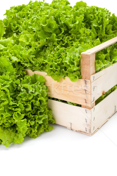 Macro of green leaf lettuce in crate Stock photo © erierika