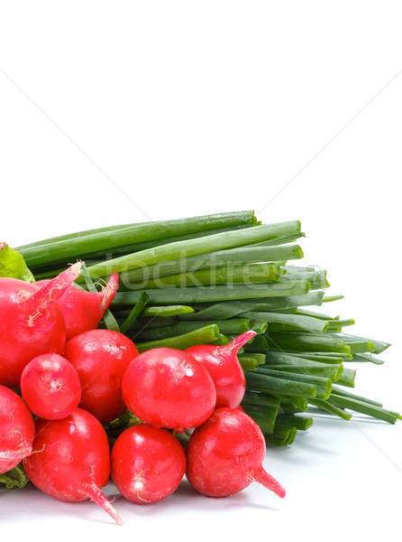 Fresh spring vegetables: radish and scallion Stock photo © erierika