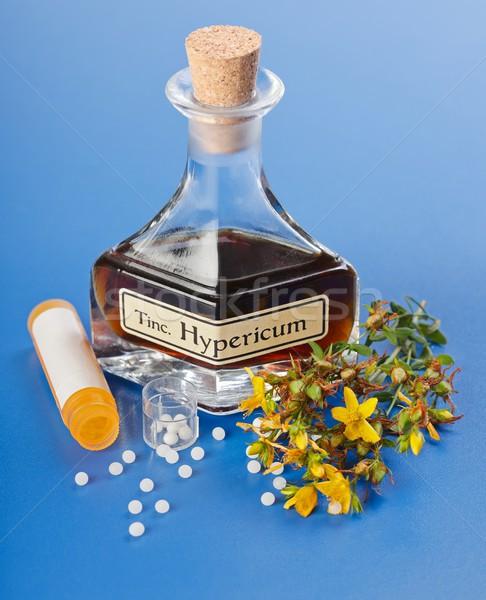 Bitki homeopatik hapları çiçekler şişe modern Stok fotoğraf © erierika