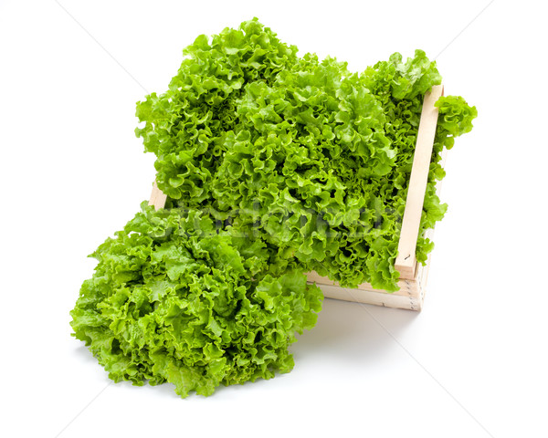 Green leaf lettuce in crate Stock photo © erierika