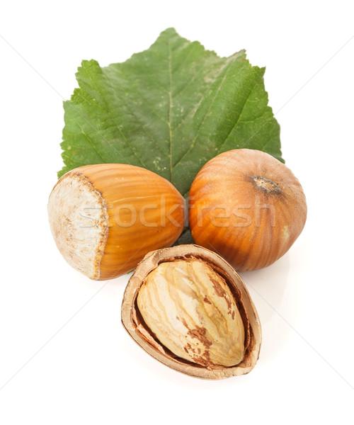 Hazelnut seeds Stock photo © erierika