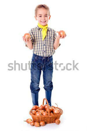 Little agriculturist holding onions Stock photo © erierika