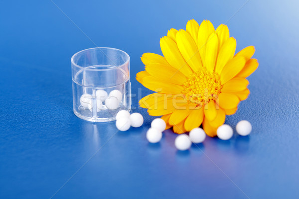 Calendula Officinalis and homeopathic pills Stock photo © erierika