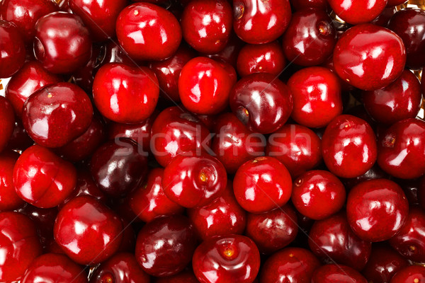 Sweet cherry berries background (Prunus avium) Stock photo © erierika
