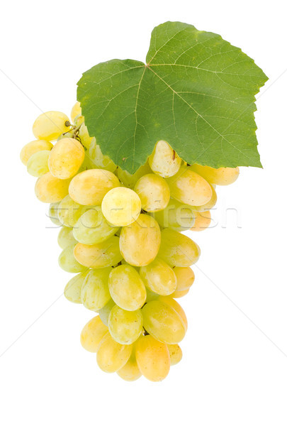 White grape cluster with leaf Stock photo © erierika