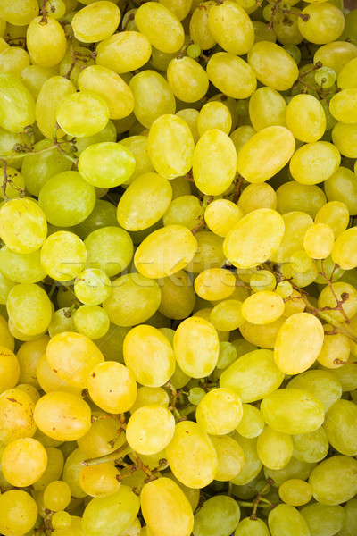 White grape berries (Vitis) background Stock photo © erierika
