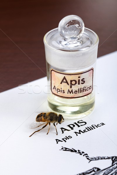 Apis Mellifica sheet, the bee and poison extract Stock photo © erierika