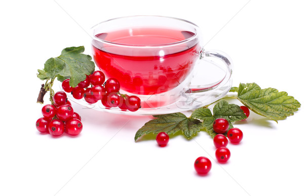 Red currant tea and fresh fruit Stock photo © erierika