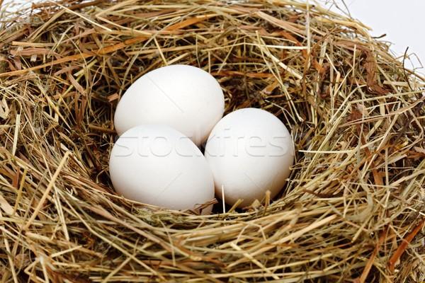 White chicken eggs in nest Stock photo © erierika