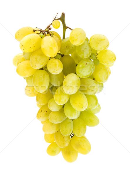 白 ブドウ クラスタ 孤立した ワイン 緑 ストックフォト © erierika