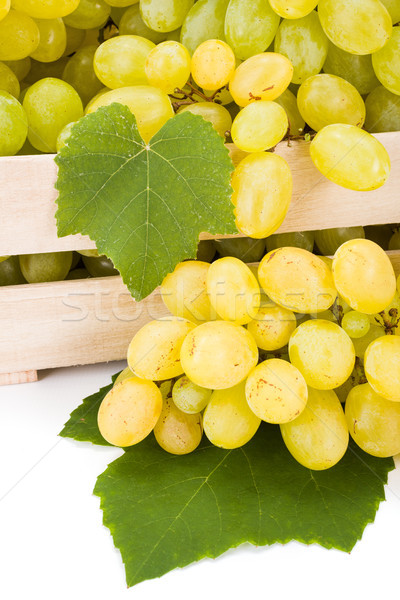 Close view of white table grape (Vitis) clusters Stock photo © erierika