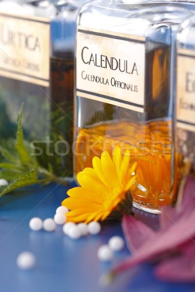 étroite vue usine fleur pétales Photo stock © erierika