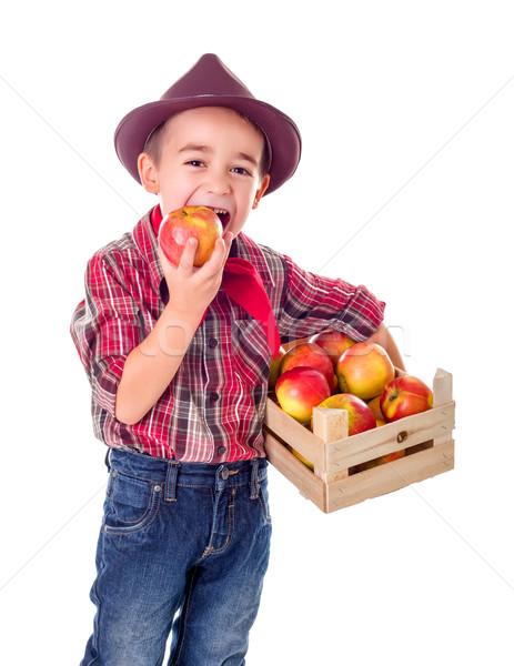 Kicsi gazda fiú kóstolás jó alma Stock fotó © erierika