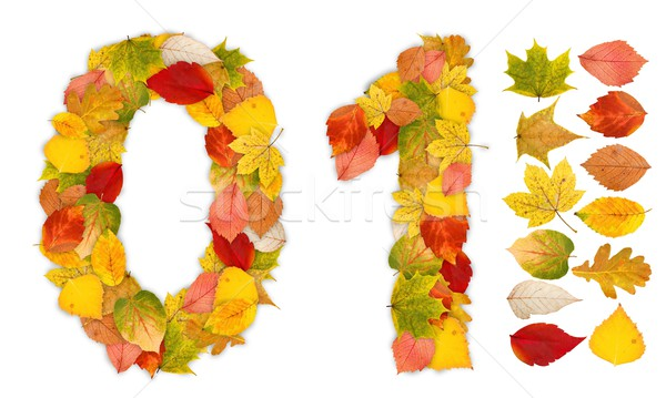 Numbers 0 and 1 made of autumn leaves Stock photo © erierika