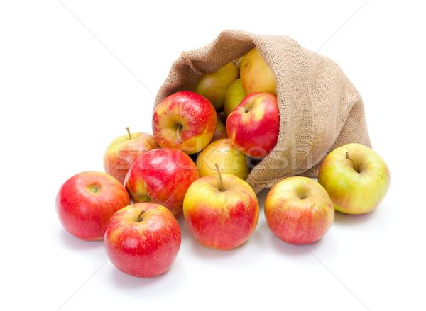 зрелый яблоки брезент мешок свежие красный Сток-фото © erierika