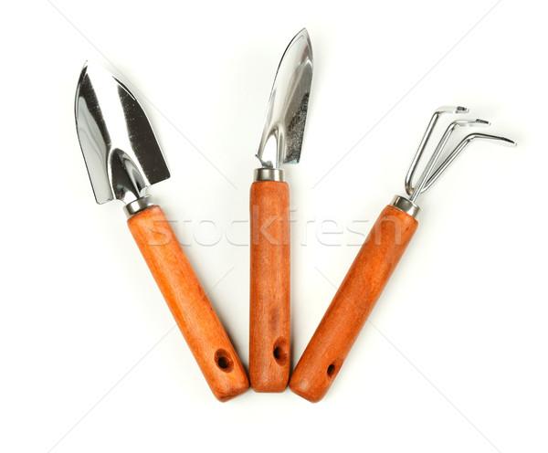 Pá ancinho metal ferramentas planta Foto stock © erierika