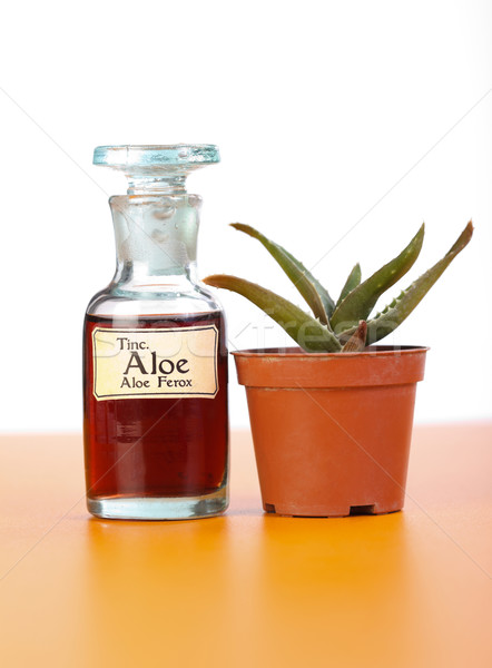 Aloe Ferrox plant and extract in bottle Stock photo © erierika