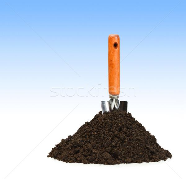 Szpadel brud mały odizolowany biały Zdjęcia stock © erierika